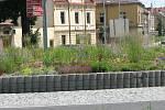 Smíšený trvalkový záhon uprostřed kruhového objezdu v Kutné Hoře přibližně rok po výsadbě.