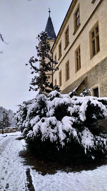 Zasněžený park pod Vlašským dvorem v Kutné Hoře.