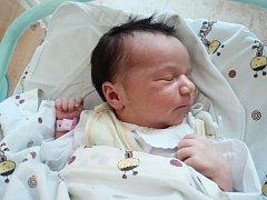 Erika Tomanová se  narodila 20. srpna v Čáslavi. Měřila 49 centimetrů a vážila 3100 gramů. Rodiče Alena a Lukáš a tříletá sestřička Adrianka ji přivítali doma v Žehušicích.
