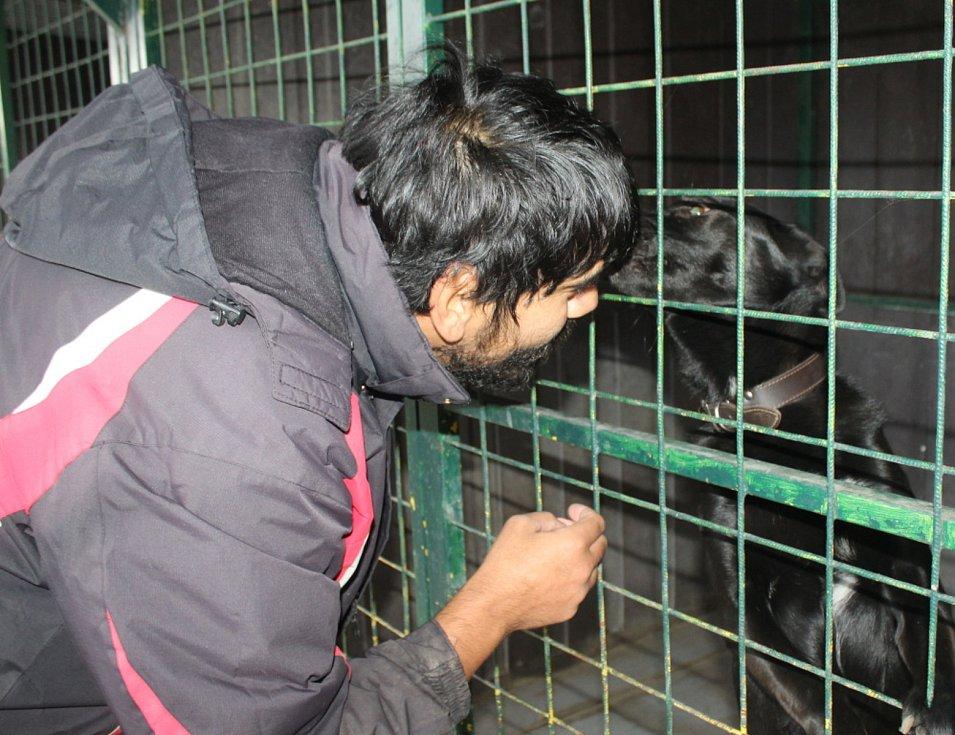 Do útulku chodí psy venčit také dobrovolníci. Mezi ně patří i Roman Čonka. Pejsci ho milují.