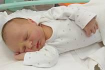 David Pecina se poprvé na svět podíval 18. srpna 2020 v 8.53 hodin v Čáslavi. Pyšnil se porodními mírami 3460 gramů a 52 centimetrů. Domů do Žlebů si ho odvezli maminka Aneta, tatínek Jakub a čtyřletá sestřička Emička.