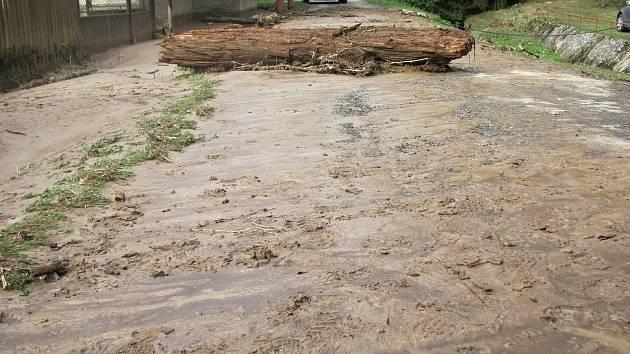 Odstraňování následků přívalového deště v chatové osadě Chřenovice - Podhradí. Archivní foto ze září 2018.
