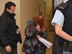 Dvě zlodějky zadrželi občané z obce Církvice na Kutnohorsku následně poté, co se chvíli před tím pokusily okrást seniorku u ní v bytě