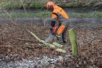 Začalo kácení stromů kvůli cyklostezce.