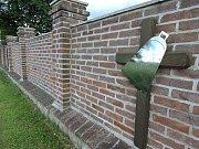 Stopy třicetileté války v okolí Čáslavi - pietní park v Bratčicích.