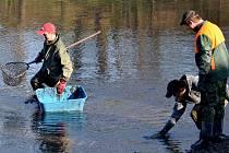 Čáslavští rybáři setkali u rybníku Zemánek ve Vodrantech.