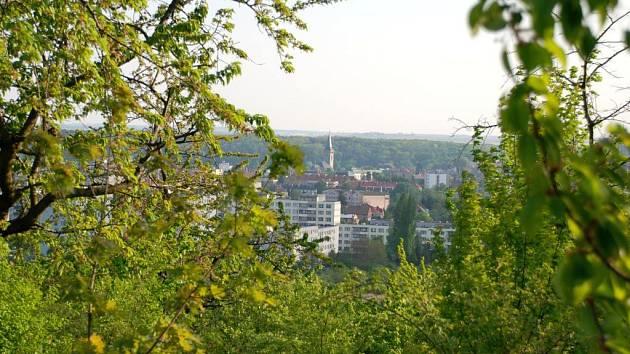 Starý třešňový sad nad sídlištěm Šipší před výstavbou chrání současný územní plán.