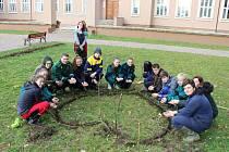 Projekt Krokus 2019 na Střední zemědělské škole v Čáslavi.