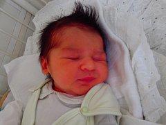 Dominik Koňak se narodil 7. prosince v Čáslavi. Vážil 2900 gramů a měřil 49 centimetrů. Doma v Kutné Hoře ho přivítali maminka Sabina a tatínek David.
