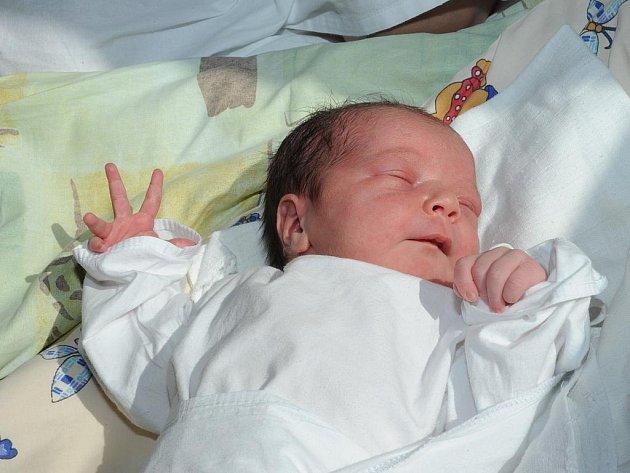 Evelína Pavlová se narodila 26. července v Kolíně. Vážila 3 300 gramů a měřila 50 centimetrů. Doma v Bernardově ji přivítá maminka Lenka, tatínek Jan a sourozenci Karolína a Jaromír.