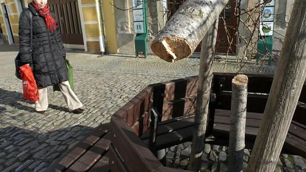 Zničený stromek u Kamenné kašny