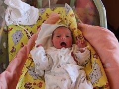 Karolína Zajícová se narodila 17. června vPraze Motole. Vážila 2370 gramů a měřila 46 centimetrů. Svojí prvorozenou dceru si odvezou tatínek Jirka a maminka Martina do Hořan u Kutné Hory.
