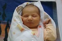 Sárinka Svobodová se narodila 9. října v Kolíně. Vážila 3705 gramů a měřila 51 centimetrů. Maminka Kristýna a tatínek Stanislav si dcerku odvezli do Zruče nad Sázavou.
