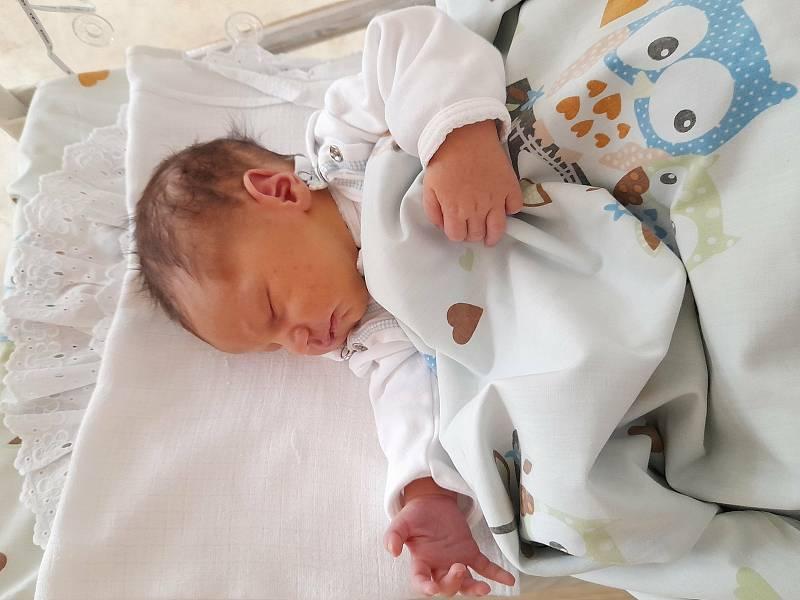 Thomas Větvička se narodil 15. září 2021 v 15.56 hodin v čáslavské porodnici. Vážil 3660 gramů a měřil 50 centimetrů . Domů do Kutné Hory si ho odvezli maminka Kateřina , tatínek Tomáš, dvanáctiletá sestřička Eliška a šestiletý bráška Maxim.