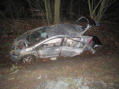 Automobil dostal při jízdě smyk a narazil do stromu.