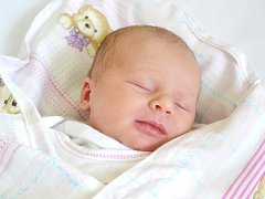 Karolína Pavlíková se narodila 29. srpna v Kolíně. Měřila 50 centimetrů a vážila 3000 gramů. Maminka Tereza a tatínek David si ji odvezli domů do Žehušic.