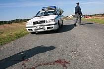Dopravní nehoda u Damírova, při které náměstek ministra vnitra Vladimír Zeman utrpěl komplikovanou zlomeninu stehenní kosti.