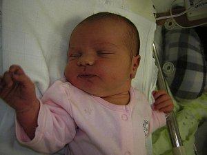 Viktorie Vašková se poprvé na svět podívala 7. listopadu 2018 v 19.56 hodin v čáslavské porodnici. Pyšní se mírami 4245 gramů a 54 centimetrů. Doma v Nových Dvorech ji přivítají maminka Barbora, tatínek Pavel, desetiletý bráška Matouš, osmiletá sestřička