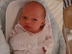 Nikol Vítková se narodila 9. května vČáslavi. Vážila 3330 gramů a měřila 49 centimetrů. Doma vČáslavi ji přivítali maminka Renata, tatínek Ondřej a bratr Kubíček.