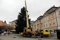 Vánoční strom na Palackého náměstí v Kutné Hoře.