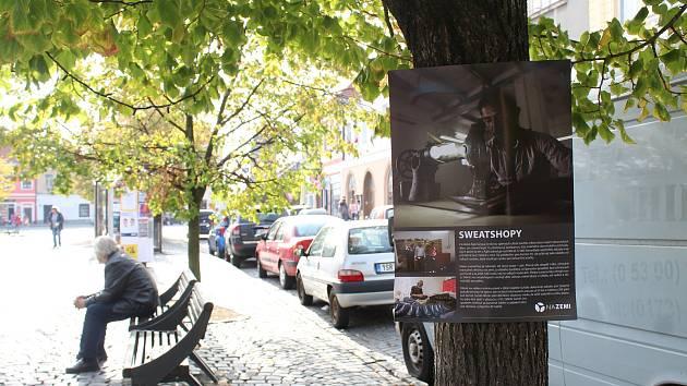 Výstava na stromech se letos věnuje tématu Naše boty.