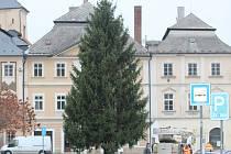 Neozdobený vánoční strom na Palackého náměstí v Kutné Hoře.