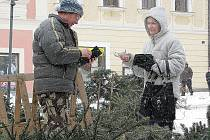 Oldřich Vyhnánek prodává stromky v Kutné Hoře u morového sloupu.