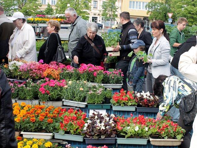 Trhy v Čáslavi na náměstí Jana Žižky z Trocnova 14. května 2016