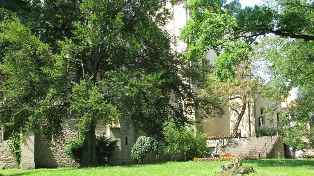Park pod Vlašským dvorem. Kutná Hora.