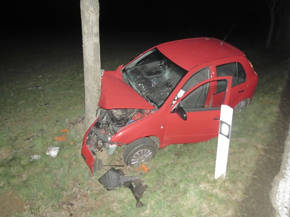 Dopravní nehoda na silnici číslo II/125 mezi obcemi Malejovice a Nechyba: vozidlo čelně narazilo do stromu.