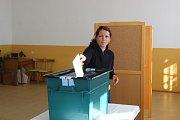 Volička v Třebešicích.