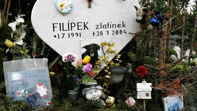 Zvířecí hřbitov v pražských Bohnicích byl kapacitně naplněn a další je v Hradci Králové.