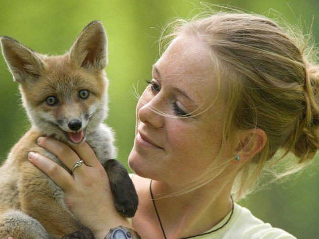 Lenka Kořínková drží v náručí půlroční lišku Elišku
