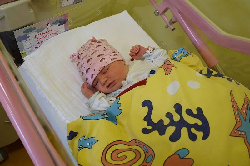 Barbora Procházková se narodila 1. října 2021 v 11.20 hodin v benešovské porodnici. Vážila 2970 g. Doma v Hrusicích ji přivítali maminka Eliška a tatínek Pavel.