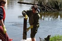 Dobrovolníci nacházeli ve vodě i na březích rostodivné předměty.