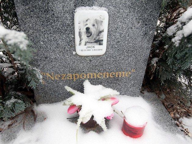 Zvířecí hřbitov na Kaňku v zimě.