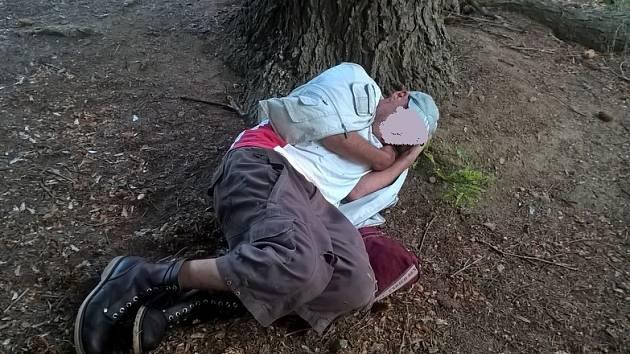 Opilý muž si ustlal pod stromem.