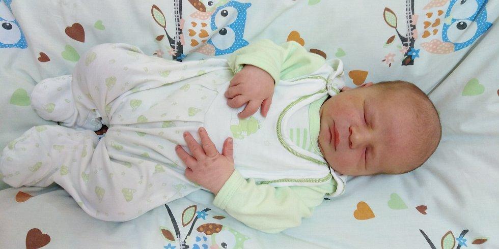 František Víšek se narodil 25. listopadu 2020 ve 12. 36 hodin v čáslavské porodnici. Vážil 4280 gramů a měřil 55 centimetrů. Domů do Paběnic si ho odvezli maminka Tereza, tatínek Zdeněk a pětiletý bráška Zdeněček.