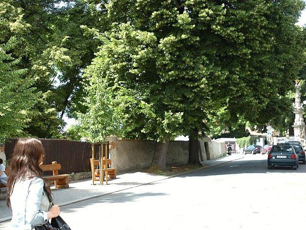 Skupina vzrostlých stromů chráněných státem se nachází v Kutné Hoře v okolí sedlecké kostnice.