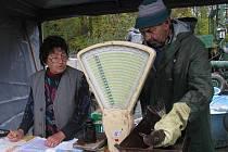 Pod hrází Vavřineckého rybníka byly k zakoupení různé druhy ryb.