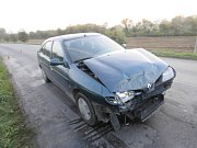 Bažant způsobil dopravní nehodu.