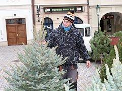 Prodej vánočních stromů na Kutnohorsku 2017.