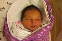 Stella Kocmanová se poprvé na svět podívala 2. prosince 2019 ve 14.10 hodin čáslavské porodnici. Vážila 3630 gramů a měřila 50 centimetrů. Domů do Kutné Hory si ji odvezli maminka Nela a tatínek Ondřej.
