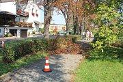Kácení kaštanové aleje na Žižkově v Kutné Hoře pokračuje.
