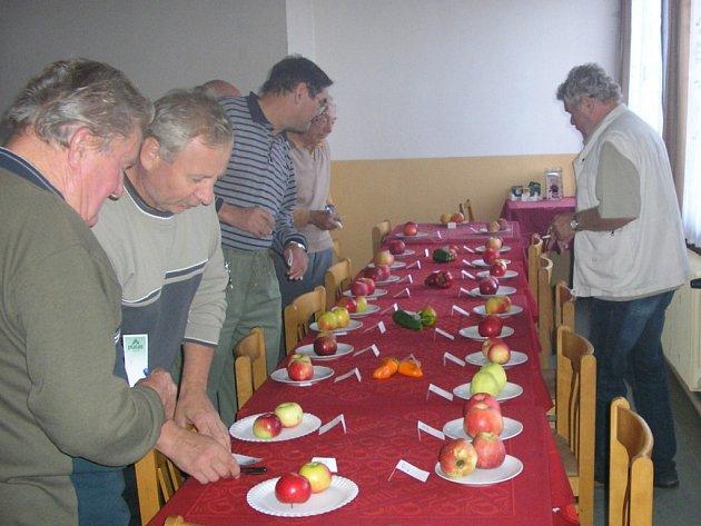 Výstava jablek v Klukách