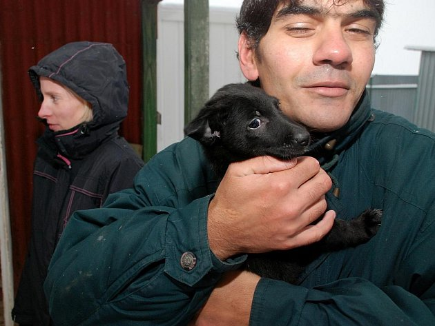 Vánoce v kutnohorském psím útulku. 19.12.2009