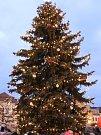 Čáslavští poděkovali Regině Kopové za vánoční strom.