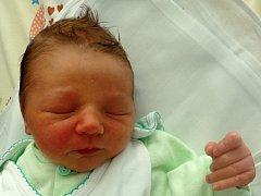 Viktor Hašek se narodil 25. června v Čáslavi. Vážil 3150 gramů a měřil 50 centimetrů. Doma v Čáslavi ho přivítali maminka Eliška a tatínek Miroslav.