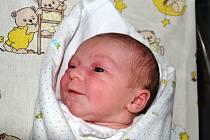 Nikola Volejníková se narodila 31. října v Kolíně. Měřila 47 centimetrů a vážila 2940 gramů maminka Veronika a tatínkovi David si ji odvezli domů do Svatého Mikuláše, kde na ni čekala sestřička Elenka.
