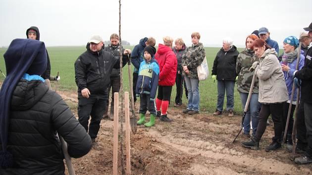 Ve Vinařích vysadili 106 nových ovocných stromů.